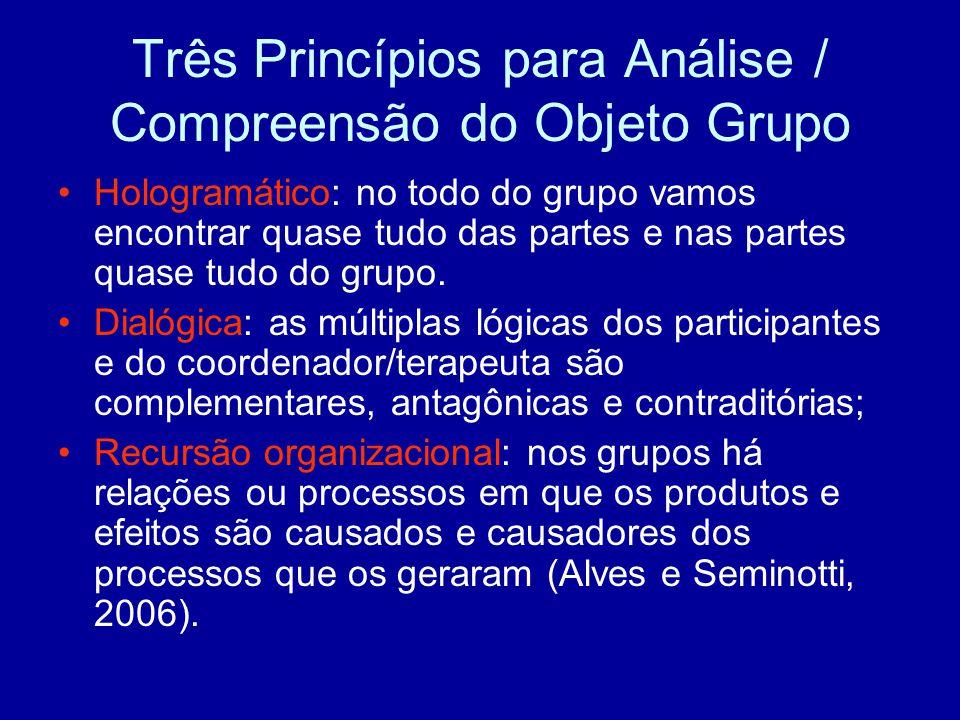 Três Princípios para Análise / Compreensão do Objeto Grupo Hologramático: no todo do grupo vamos encontrar quase tudo das partes e nas partes quase tudo do grupo.