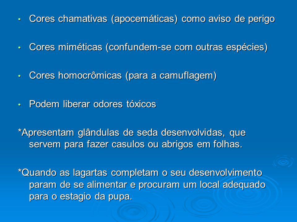 Cores chamativas (apocemáticas) como aviso de perigo Cores chamativas (apocemáticas) como aviso de perigo Cores miméticas (confundem-se com outras esp