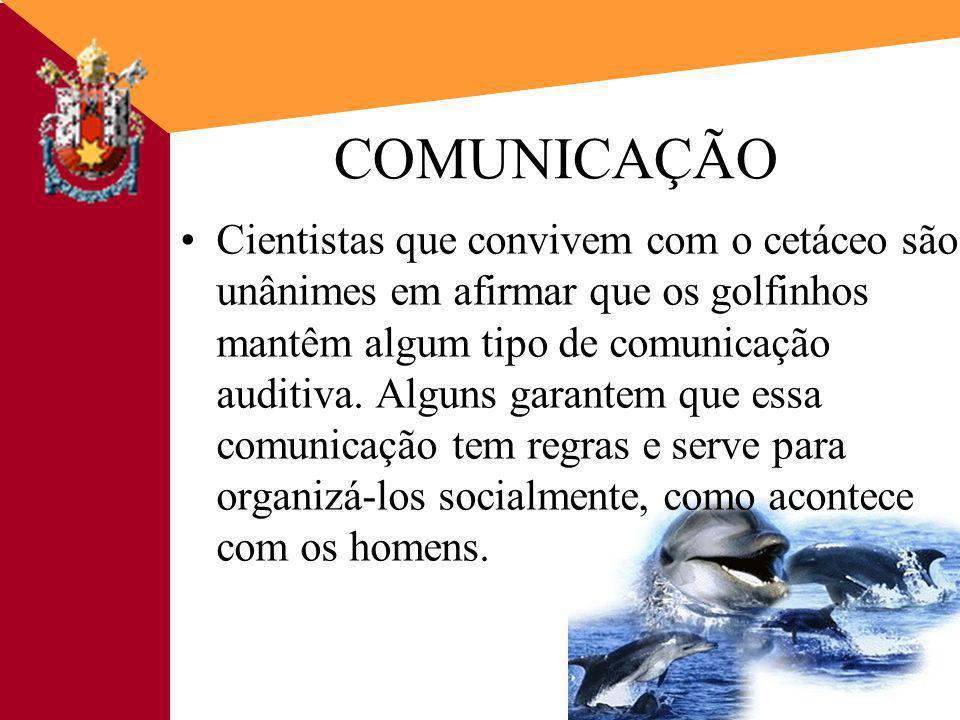 9 9 COMUNICAÇÃO É mais do que simplesmente transmitir um significado, precisa incluir a transferência e a compreensão da mensagem.