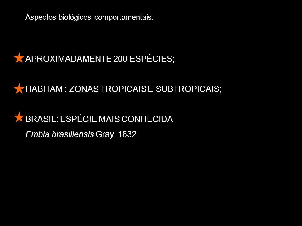 Aspectos biológicos comportamentais: APROXIMADAMENTE 200 ESPÉCIES; HABITAM : ZONAS TROPICAIS E SUBTROPICAIS; BRASIL: ESPÉCIE MAIS CONHECIDA Embia brasiliensis Gray, 1832.