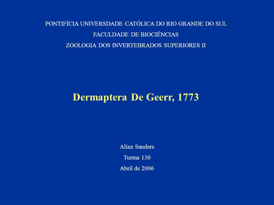 PONTIFÍCIA UNIVERSDADE CATÓLICA DO RIO GRANDE DO SUL FACULDADE DE BIOCIÊNCIAS ZOOLOGIA DOS INVERTEBRADOS SUPERIORES II Dermaptera De Geerr, 1773 Aline