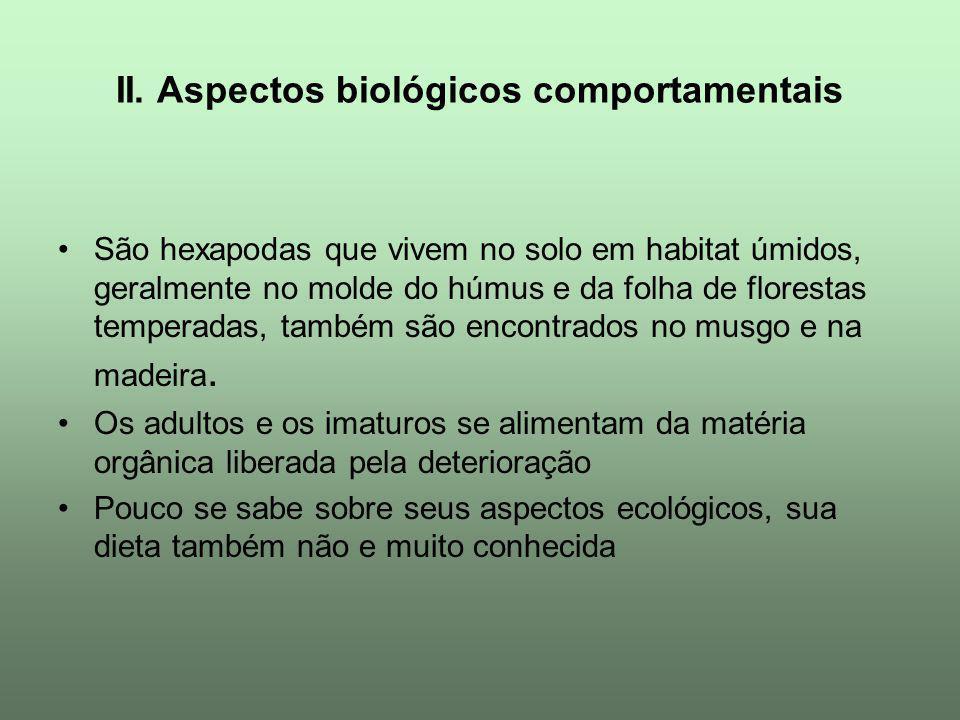 II. Aspectos biológicos comportamentais São hexapodas que vivem no solo em habitat úmidos, geralmente no molde do húmus e da folha de florestas temper