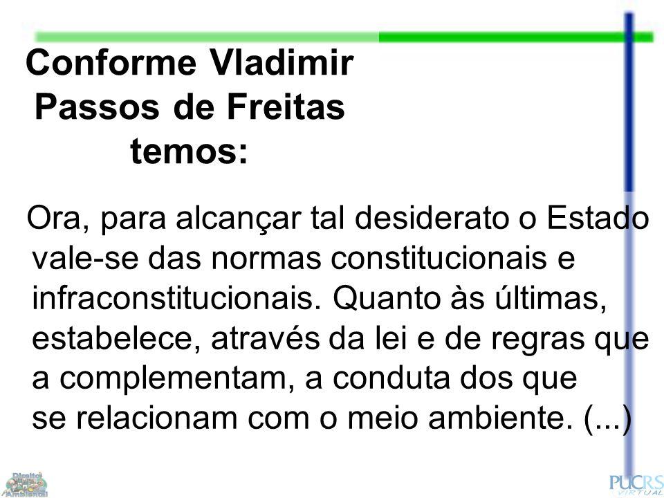 Conforme Vladimir Passos de Freitas temos: Ora, para alcançar tal desiderato o Estado vale-se das normas constitucionais e infraconstitucionais.