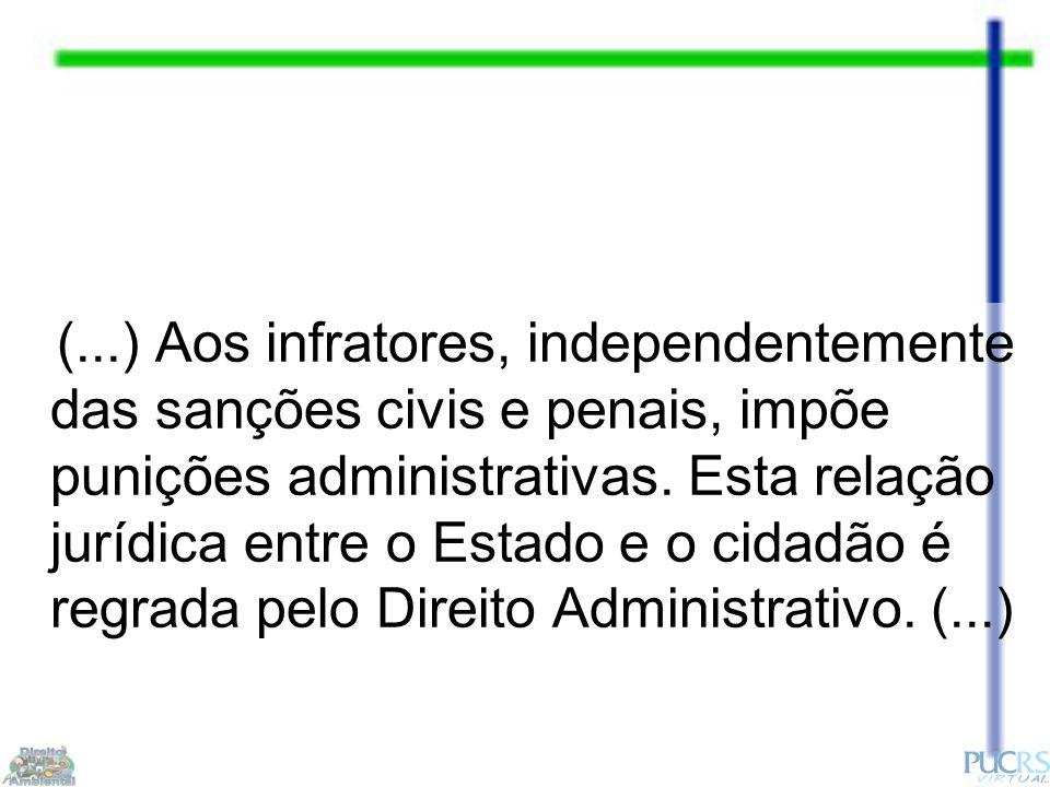 (...) Aos infratores, independentemente das sanções civis e penais, impõe punições administrativas.