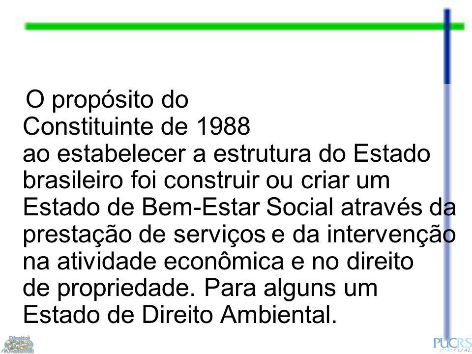 O propósito do Constituinte de 1988 ao estabelecer a estrutura do Estado brasileiro foi construir ou criar um Estado de Bem-Estar Social através da prestação de serviços e da intervenção na atividade econômica e no direito de propriedade.