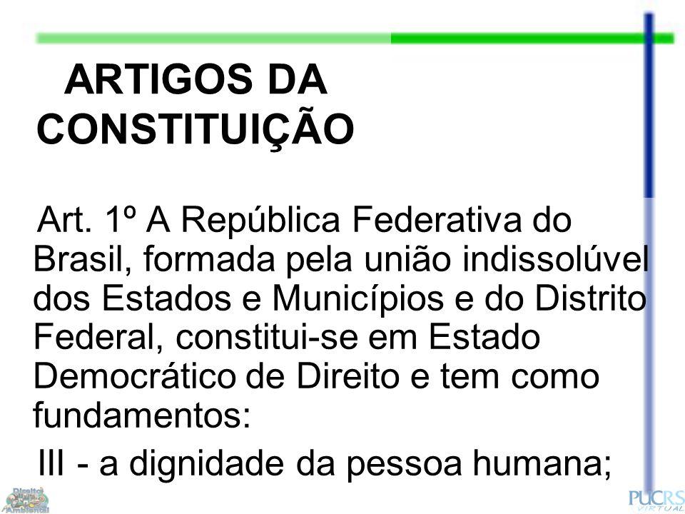 ARTIGOS DA CONSTITUIÇÃO Art.