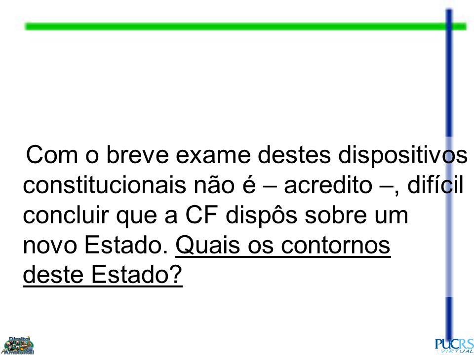 Com o breve exame destes dispositivos constitucionais não é – acredito –, difícil concluir que a CF dispôs sobre um novo Estado.