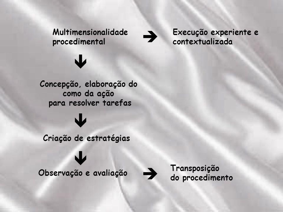 Multimensionalidade procedimental Execução experiente e contextualizada Concepção, elaboração do como da ação para resolver tarefas Criação de estratégias Observação e avaliação Transposição do procedimento