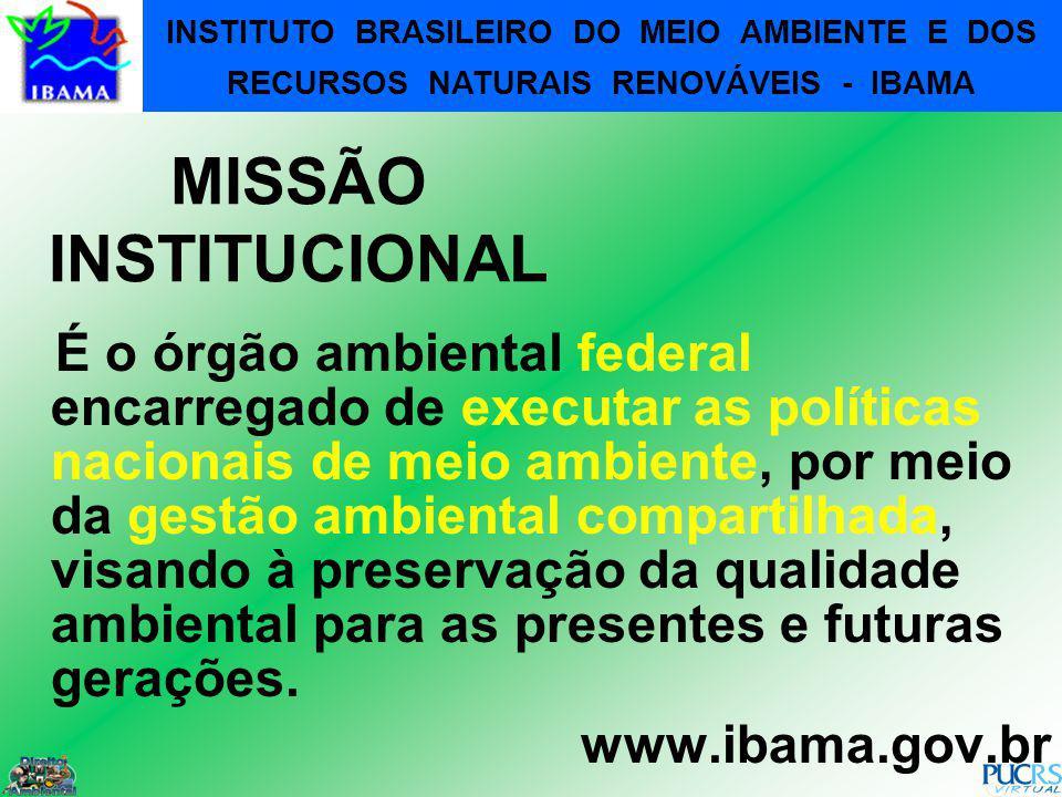 125 MISSÃO INSTITUCIONAL É o órgão ambiental federal encarregado de executar as políticas nacionais de meio ambiente, por meio da gestão ambiental com