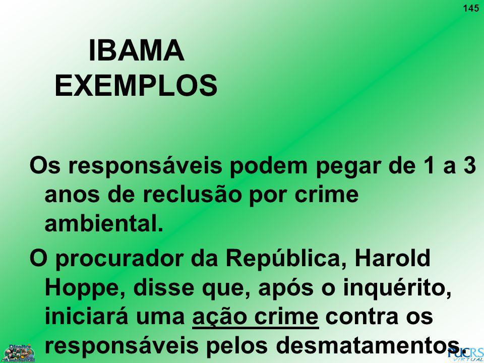 145 IBAMA EXEMPLOS Os responsáveis podem pegar de 1 a 3 anos de reclusão por crime ambiental. O procurador da República, Harold Hoppe, disse que, após