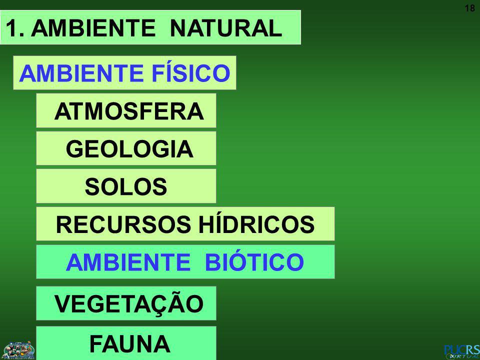 18 1. AMBIENTE NATURAL AMBIENTE FÍSICO ATMOSFERA GEOLOGIA SOLOS RECURSOS HÍDRICOS AMBIENTE BIÓTICO VEGETAÇÃO FAUNA