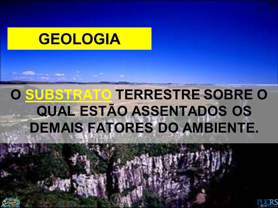 20 GEOLOGIA O SUBSTRATO TERRESTRE SOBRE O QUAL ESTÃO ASSENTADOS OS DEMAIS FATORES DO AMBIENTE.