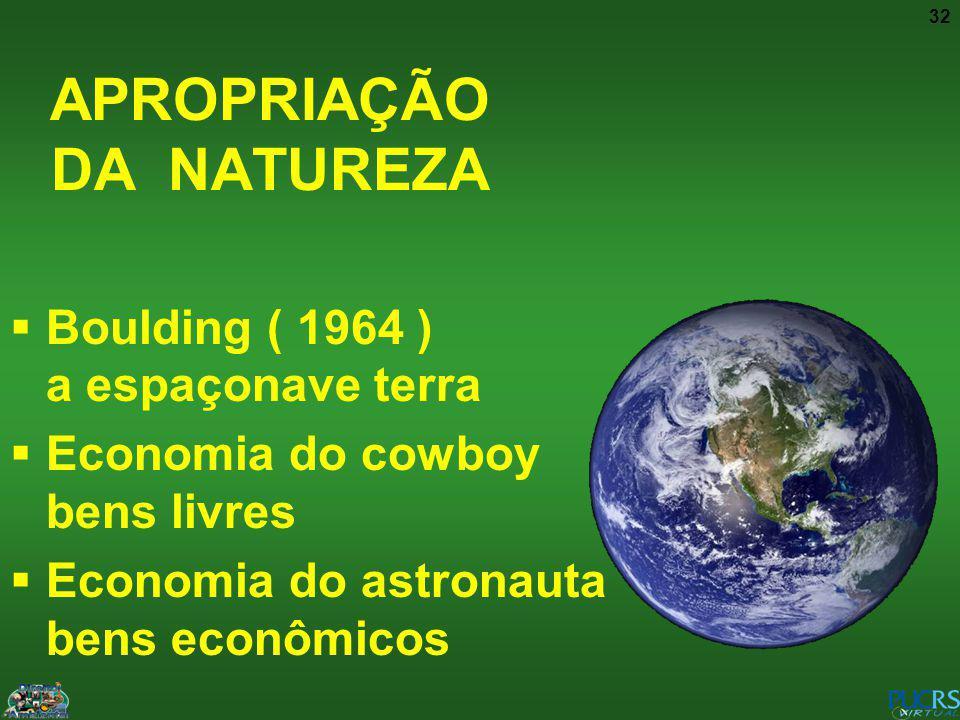32 APROPRIAÇÃO DA NATUREZA Boulding ( 1964 ) a espaçonave terra Economia do cowboy bens livres Economia do astronauta bens econômicos