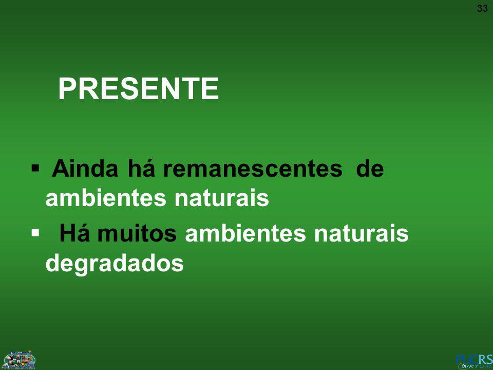 33 PRESENTE Ainda há remanescentes de ambientes naturais Há muitos ambientes naturais degradados