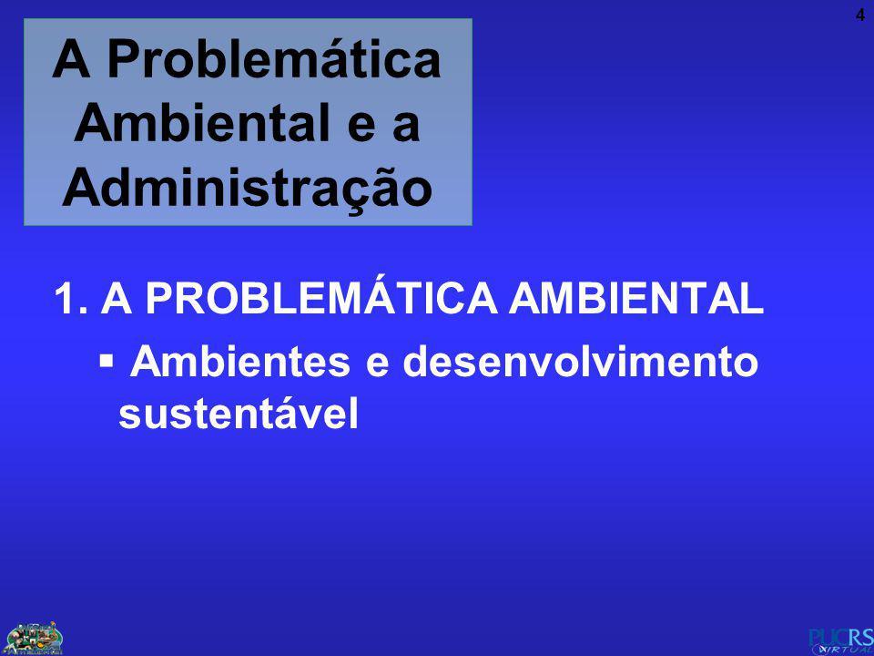 4 A Problemática Ambiental e a Administração 1. A PROBLEMÁTICA AMBIENTAL Ambientes e desenvolvimento sustentável