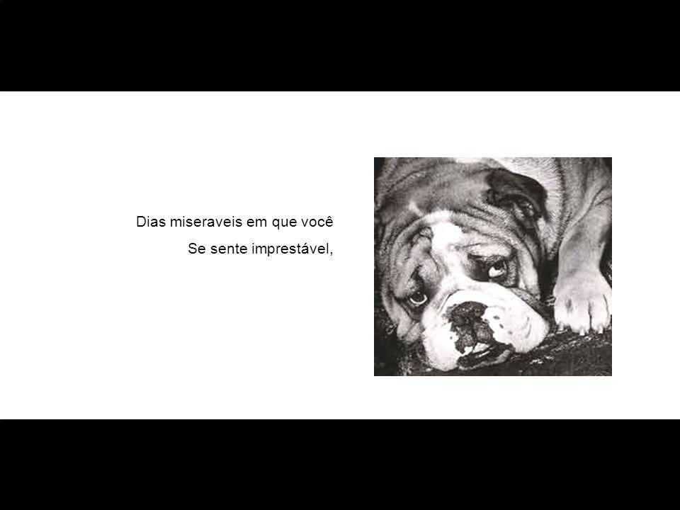 Nunca desista! Tente!! Invente!!