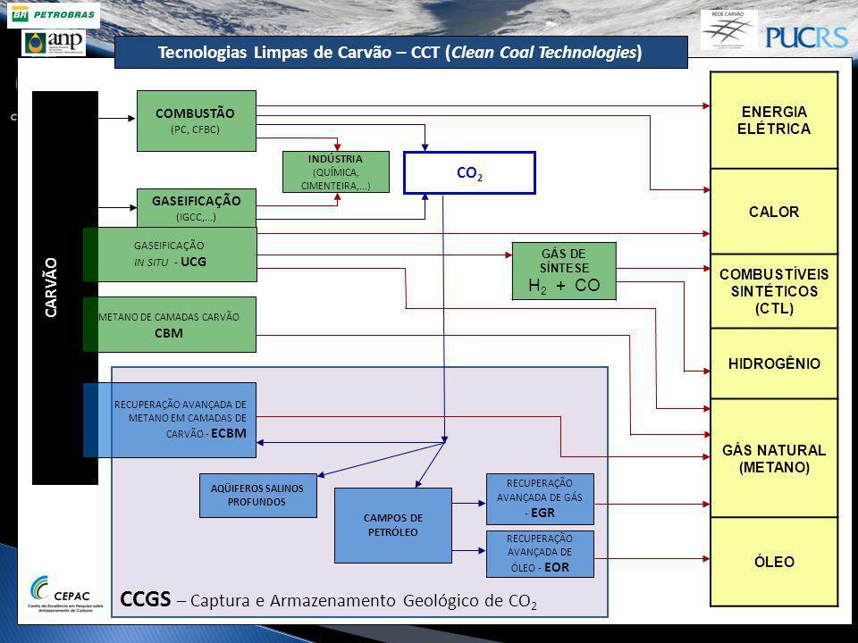 CCGS – Captura e Armazenamento Geológico de CO 2 GASEIFICAÇÃO (IGCC,...) CO 2 INDÚSTRIA (QUÍMICA, CIMENTEIRA,...) AQÜIFEROS SALINOS PROFUNDOS CAMPOS D