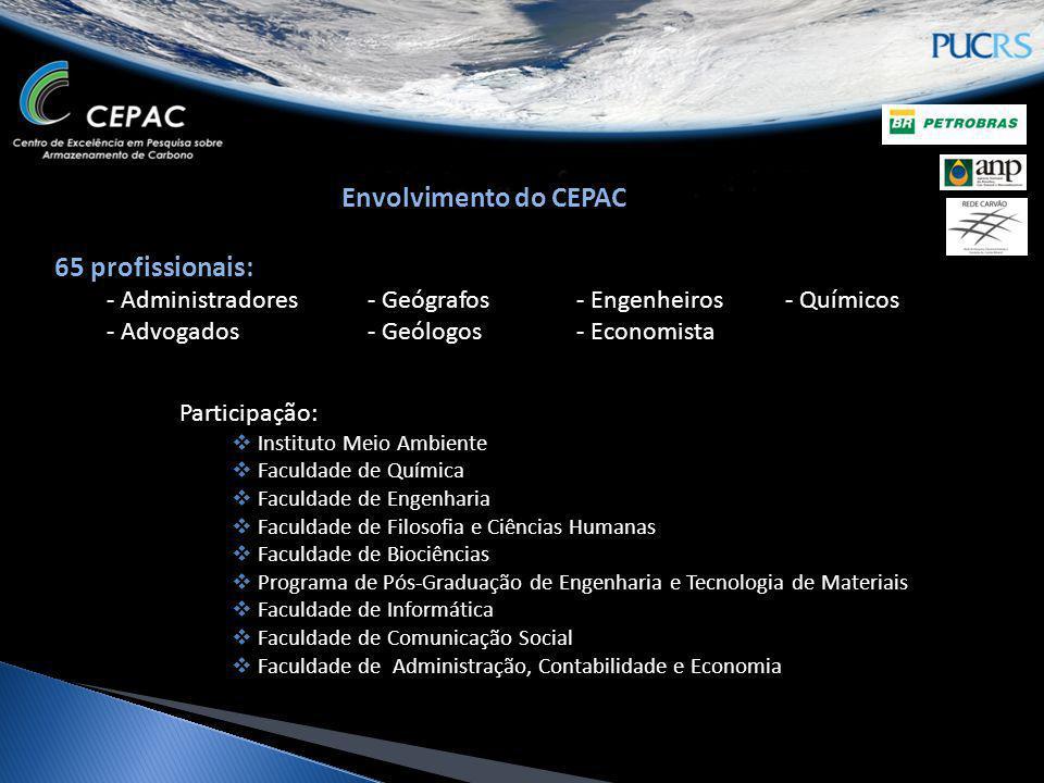 65 profissionais: - Administradores- Geógrafos- Engenheiros- Químicos - Advogados- Geólogos- Economista Participação: Instituto Meio Ambiente Faculdad