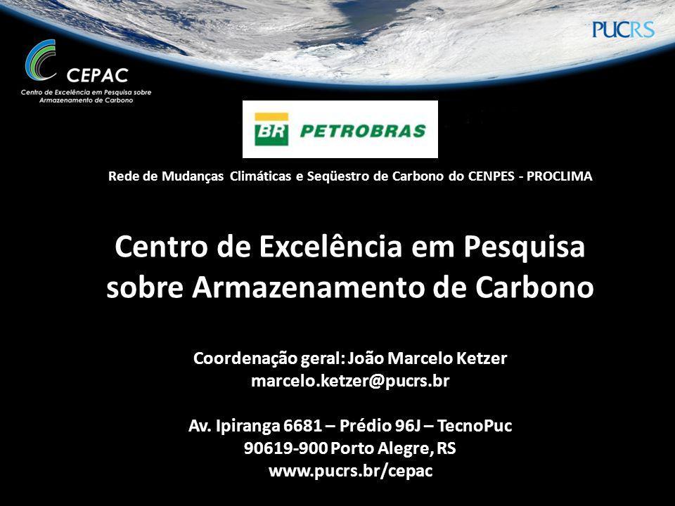 Rede de Mudanças Climáticas e Seqüestro de Carbono do CENPES - PROCLIMA Centro de Excelência em Pesquisa sobre Armazenamento de Carbono Coordenação ge