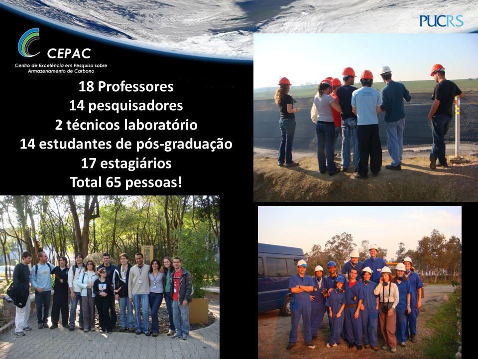 18 Professores 14 pesquisadores 2 técnicos laboratório 14 estudantes de pós-graduação 17 estagiários Total 65 pessoas!