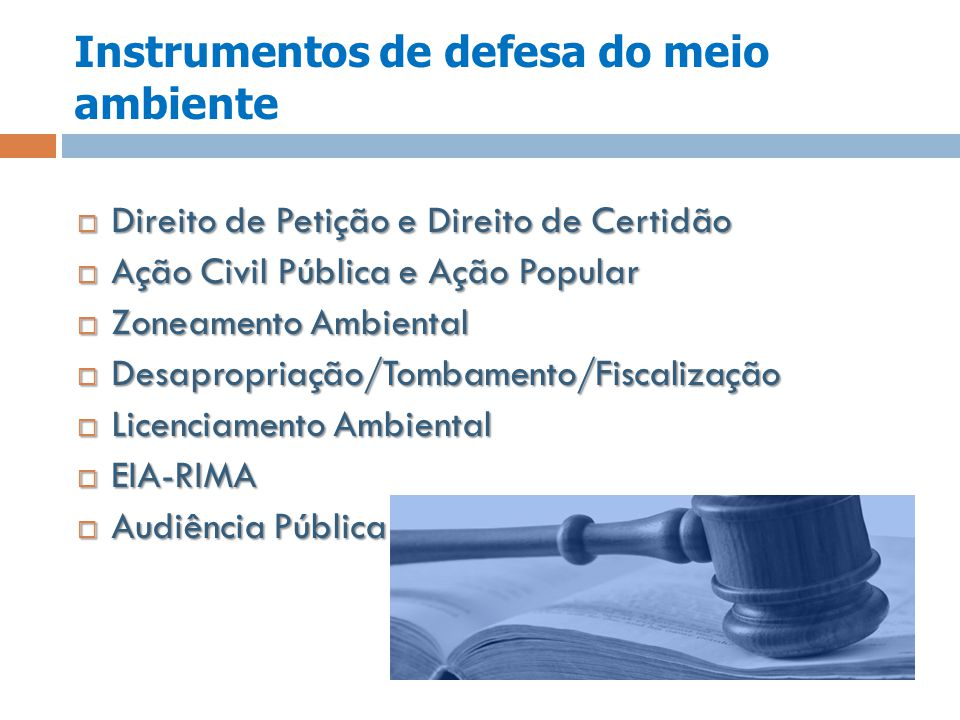 Instrumentos de defesa do meio ambiente Direito de Petição e Direito de Certidão Direito de Petição e Direito de Certidão Ação Civil Pública e Ação Po