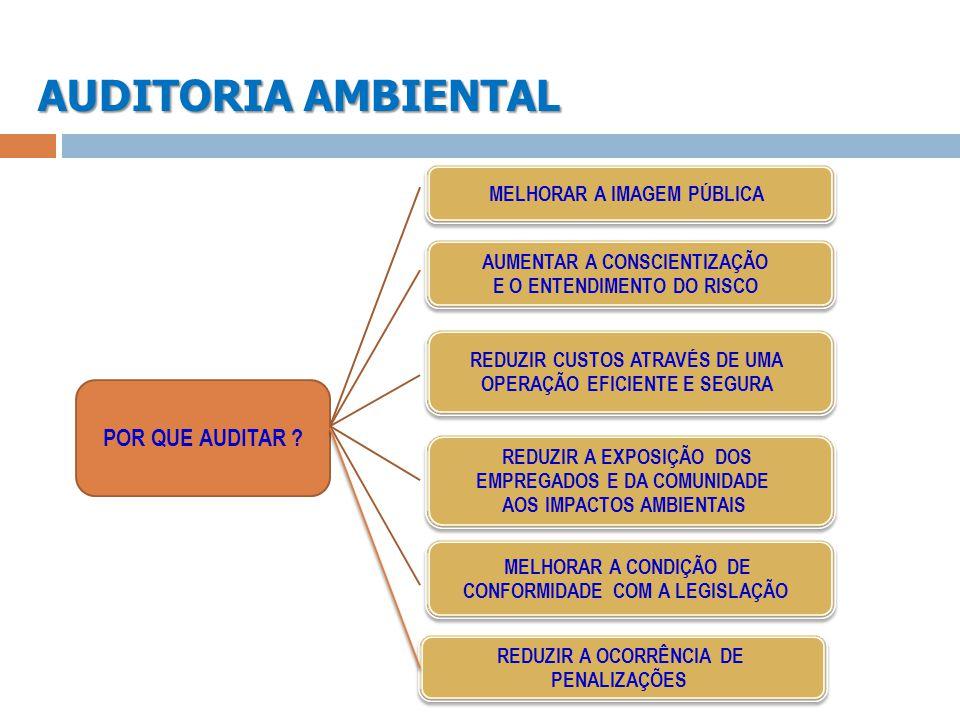 AUDITORIA AMBIENTAL MELHORAR A IMAGEM PÚBLICA AUMENTAR A CONSCIENTIZAÇÃO E O ENTENDIMENTO DO RISCO AUMENTAR A CONSCIENTIZAÇÃO E O ENTENDIMENTO DO RISC