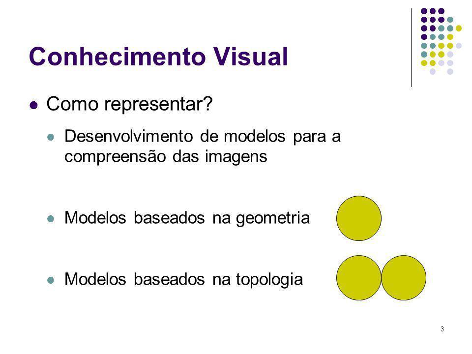 4 Conhecimento Visual Em determinados casos, para o reconhecimento de um objeto, faz-se necessário saber como esse objeto aparece em um determinado contexto Normalmente realizado através do uso de modelos associados a algoritmos de combinação e reconhecimento e mais recentemente ao uso de ontologias