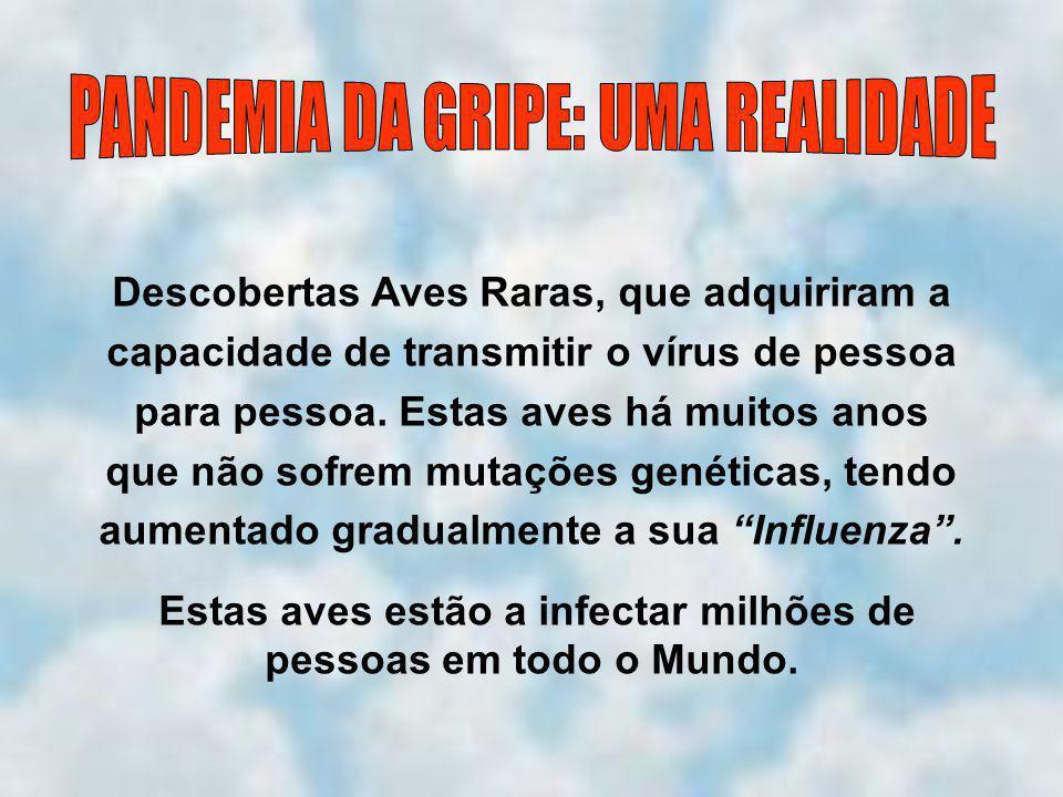 Descobertas Aves Raras, que adquiriram a capacidade de transmitir o vírus de pessoa para pessoa.