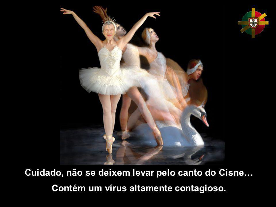 Cuidado, não se deixem levar pelo canto do Cisne… Contém um vírus altamente contagioso.