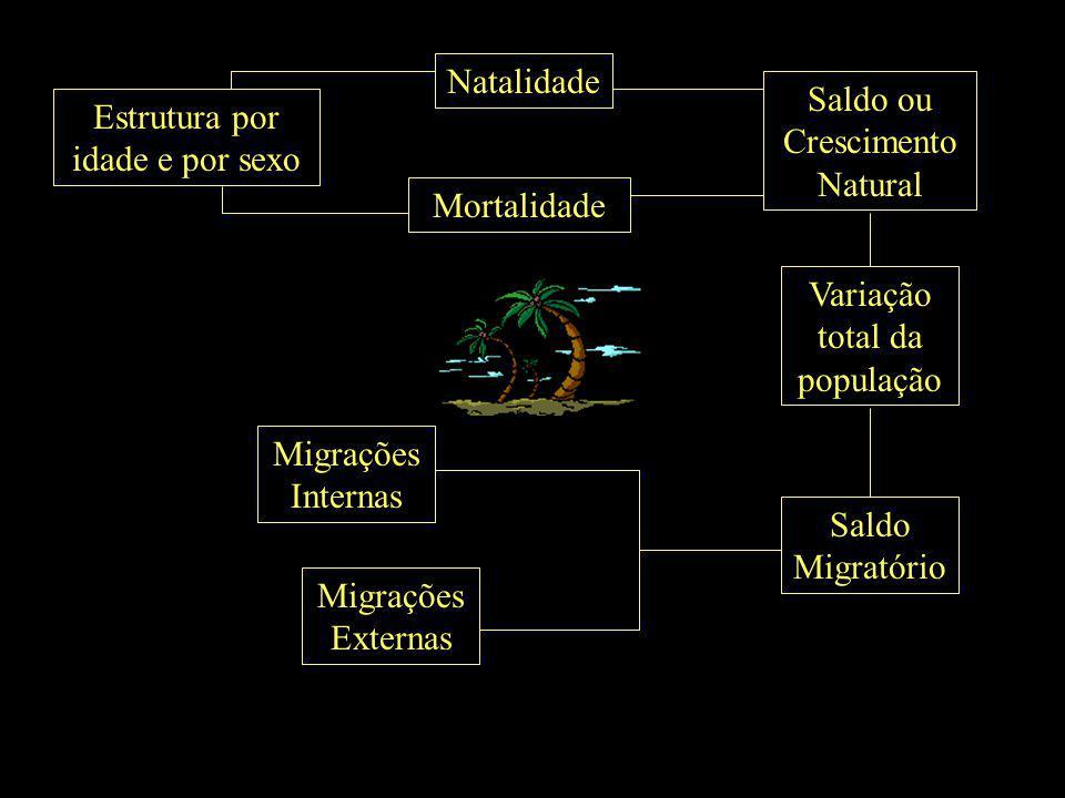 Saldo Migratório Migrações Internas Migrações Externas Estrutura por idade e por sexo Natalidade Mortalidade Saldo ou Crescimento Natural Variação tot