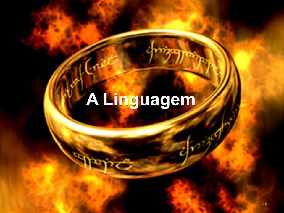 A Linguagem 29