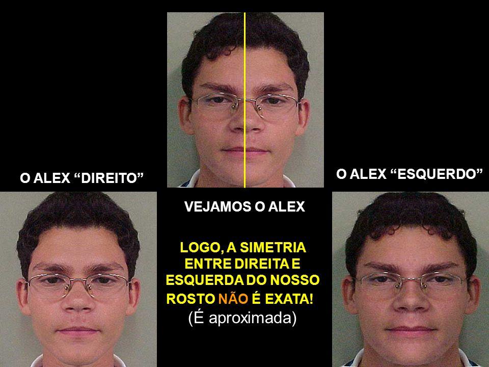 VEJAMOS O ALEX O ALEX DIREITO O ALEX ESQUERDO LOGO, A SIMETRIA ENTRE DIREITA E ESQUERDA DO NOSSO ROSTO NÃO É EXATA! ! (É aproximada)