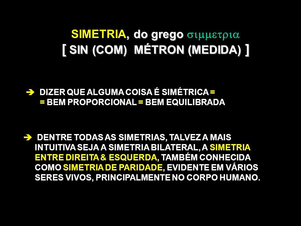 , do grego SIMETRIA, do grego [ SIN (COM) MÉTRON (MEDIDA) ] DIZER QUE ALGUMA COISA É SIMÉTRICA = = BEM PROPORCIONAL = BEM EQUILIBRADA DENTRE TODAS AS