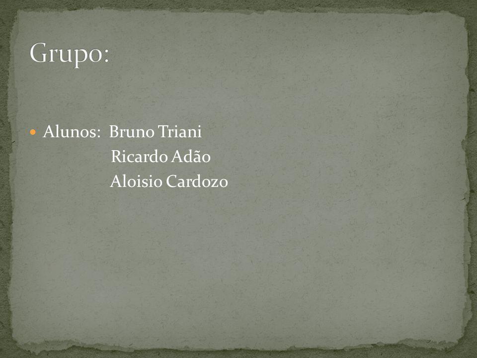 Alunos: Bruno Triani Ricardo Adão Aloisio Cardozo