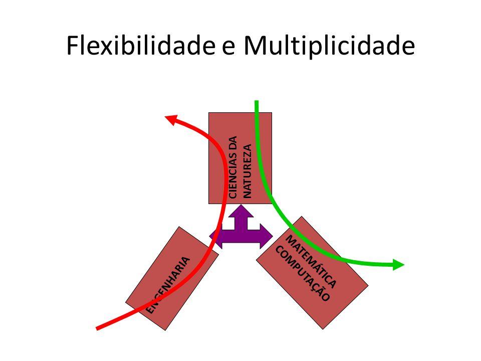 Flexibilidade e Multiplicidade ENGENHARIA CIÊNCIAS DA NATUREZA MATEMÁTICA COMPUTAÇÃO