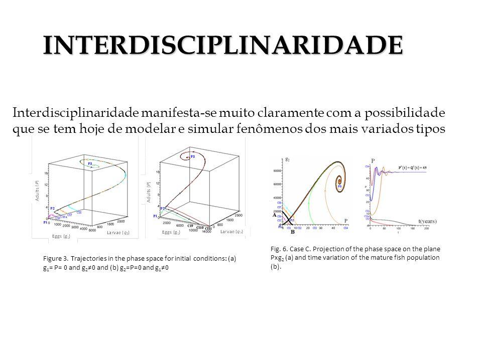 Interdisciplinaridade manifesta-se muito claramente com a possibilidade que se tem hoje de modelar e simular fenômenos dos mais variados tipos Figure