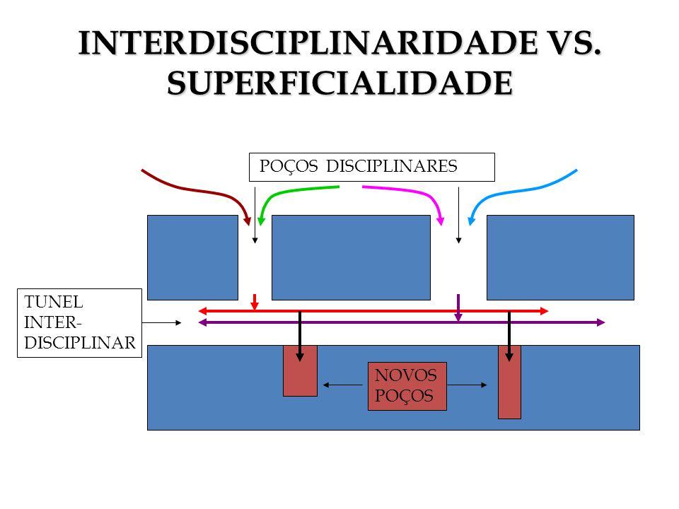 INTERDISCIPLINARIDADE VS. SUPERFICIALIDADE POÇOS DISCIPLINARES TUNEL INTER- DISCIPLINAR NOVOS POÇOS