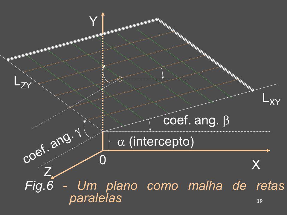 19 coef. ang. Z X Y 0 L XY L ZY Fig.6 - Um plano como malha de retas paralelas (intercepto)