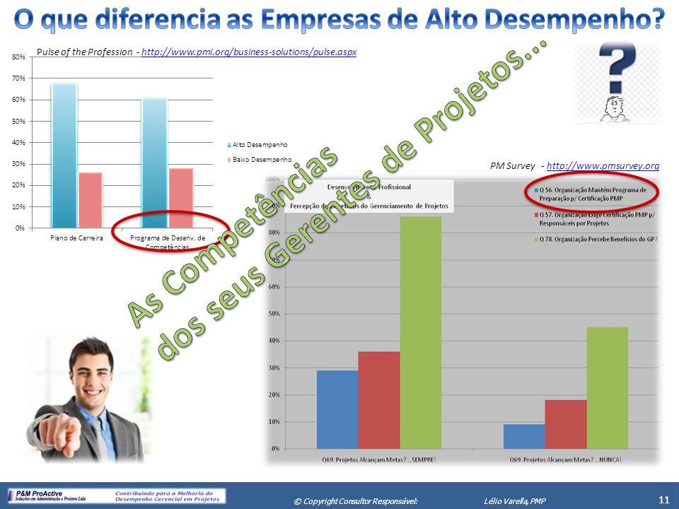X Seminário de Gerenciamento de Projetos 11 © Copyright Consultor Responsável:Lélio Varella, PMP PM Survey - http://www.pmsurvey.orghttp://www.pmsurve