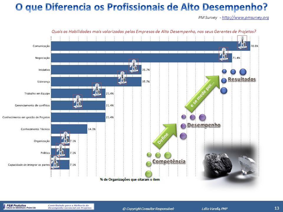 X Seminário de Gerenciamento de Projetos 13 © Copyright Consultor Responsável:Lélio Varella, PMP PM Survey - http://www.pmsurvey.orghttp://www.pmsurve