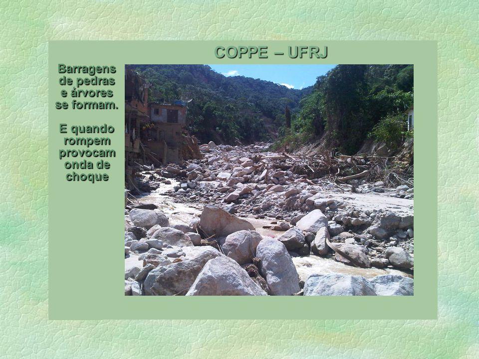 COPPE – UFRJ Barragens de pedras e árvores se formam. E quando rompem provocam onda de choque