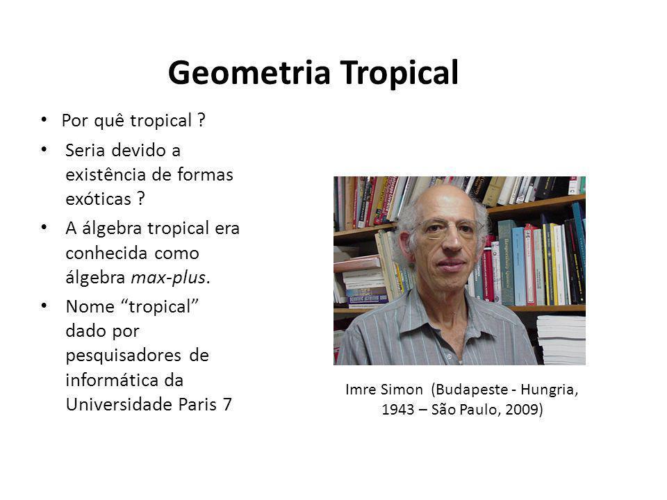 Geometria Tropical Por quê tropical ? Seria devido a existência de formas exóticas ? A álgebra tropical era conhecida como álgebra max-plus. Nome trop
