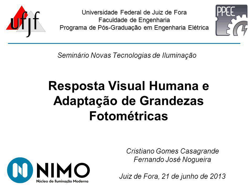 Resposta Visual Humana e Adaptação de Grandezas Fotométricas Universidade Federal de Juiz de Fora Faculdade de Engenharia Programa de Pós-Graduação em