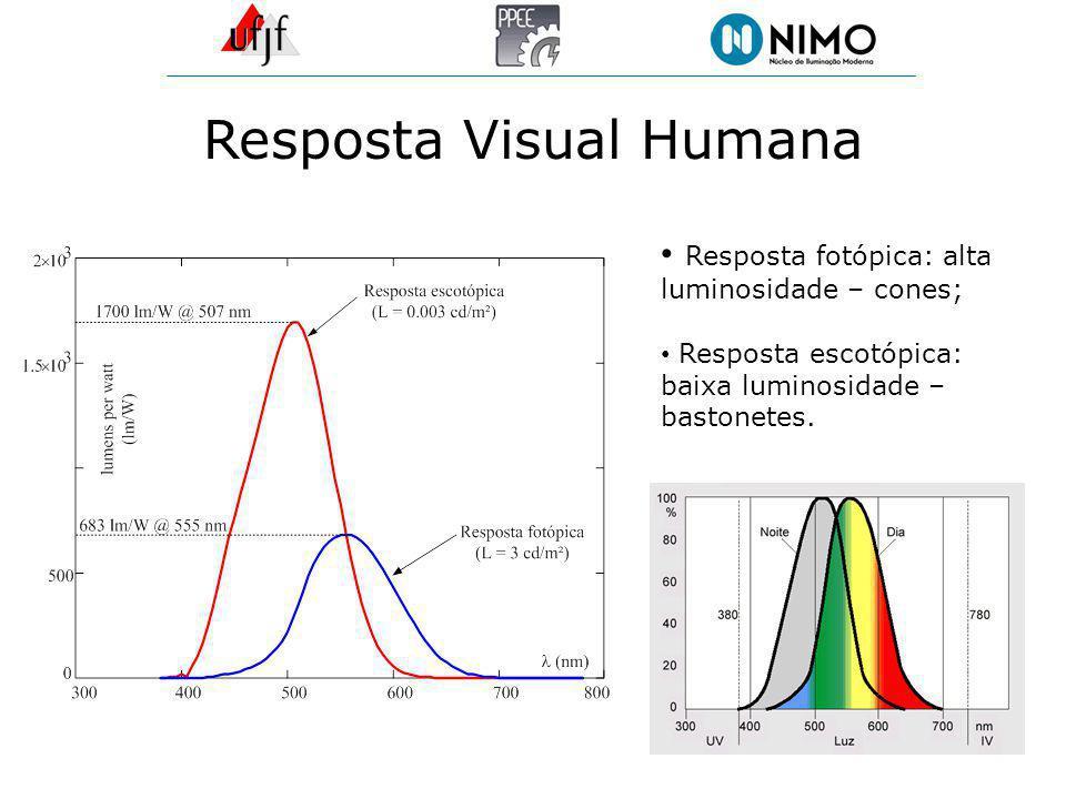 Resposta Visual Humana Resposta fotópica: alta luminosidade – cones; Resposta escotópica: baixa luminosidade – bastonetes.