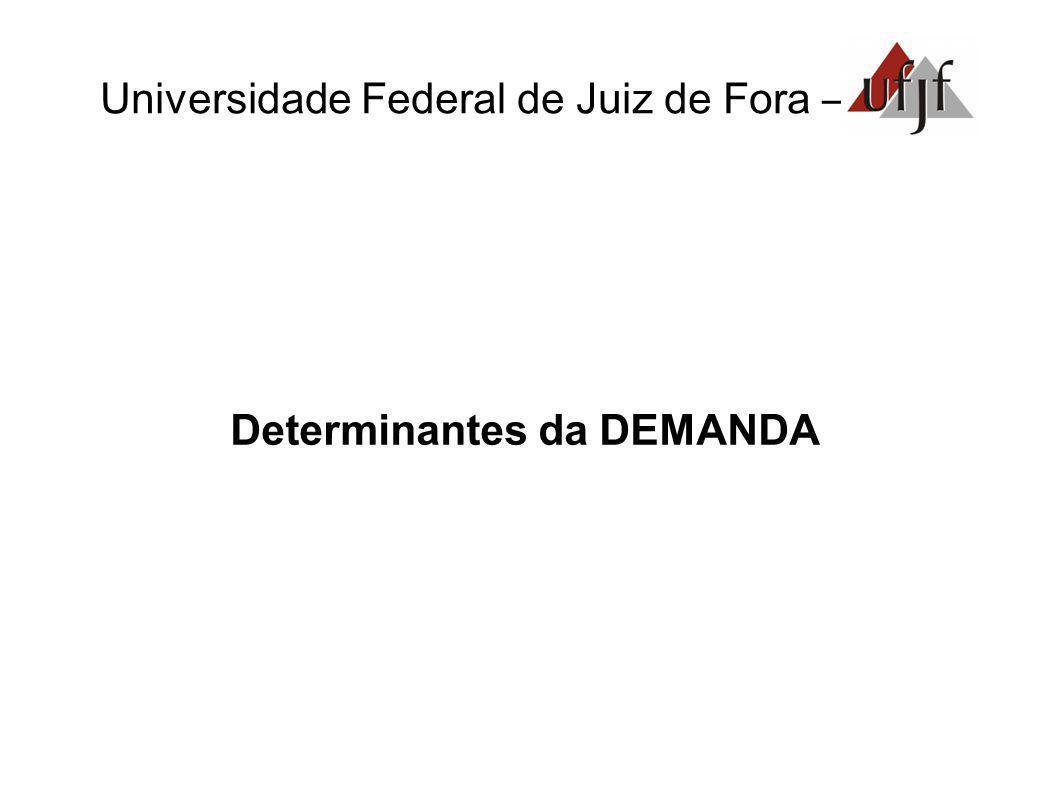 Universidade Federal de Juiz de Fora – Determinantes da DEMANDA
