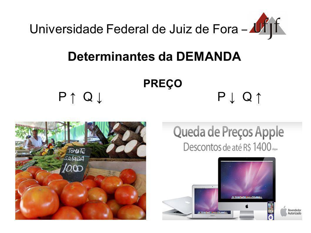 Universidade Federal de Juiz de Fora – Determinantes da DEMANDA PREÇO P Q P Q