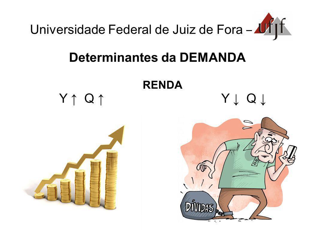 Universidade Federal de Juiz de Fora – Determinantes da DEMANDA RENDA Y Q Y Q
