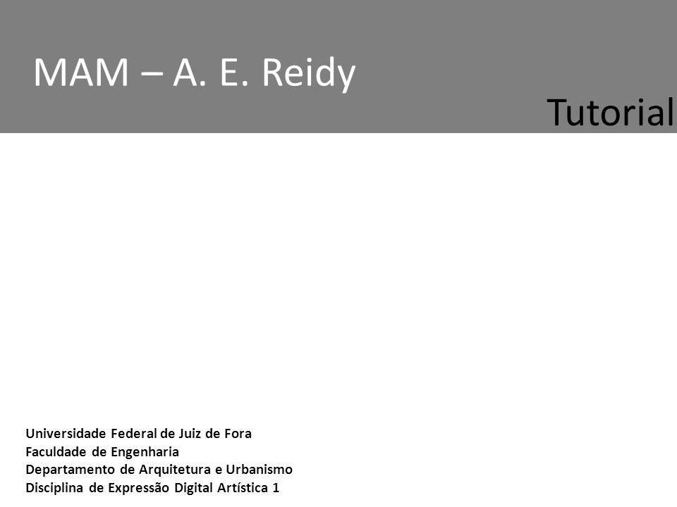Universidade Federal de Juiz de Fora Faculdade de Engenharia Departamento de Arquitetura e Urbanismo Disciplina de Expressão Digital Artística 1 MAM – A.