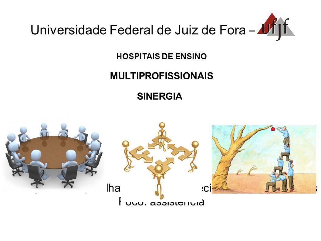 Universidade Federal de Juiz de Fora – HOSPITAIS DE ENSINO MULTIPROFISSIONAIS SINERGIA Interação - compartilhamento de conhecimentos, experiências Foco: assistência