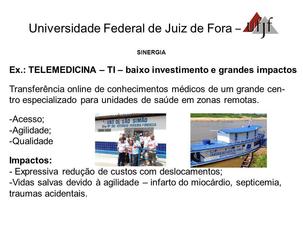 Universidade Federal de Juiz de Fora – SINERGIA Ex.: TELEMEDICINA – TI – baixo investimento e grandes impactos Transferência online de conhecimentos m